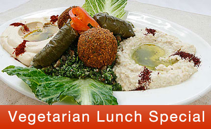 vegeterian-lunch-special